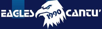 Eagles 1990